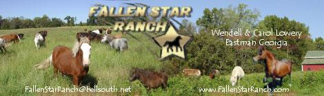 Fallen Star Ranch
